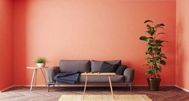 Цвет стен: виды интерьерных красок